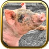 Pig Jigsaw Puzzle Games