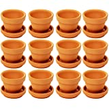 Small Terra Cotta Pots with Saucer- 12-Pack Clay Flower Pots with Saucers, Mini Flower Pot Planters for Indoor, Outdoor Plant, Succulent Display, Brown - 2.7 x 2.5 inches (Color: brown, Tamaño: 2.5 x 2.5 x 2.7 inches)