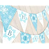 POP parties Snow Princess Birthday Banner - Winter Birthday Banner (Color: Aqua)
