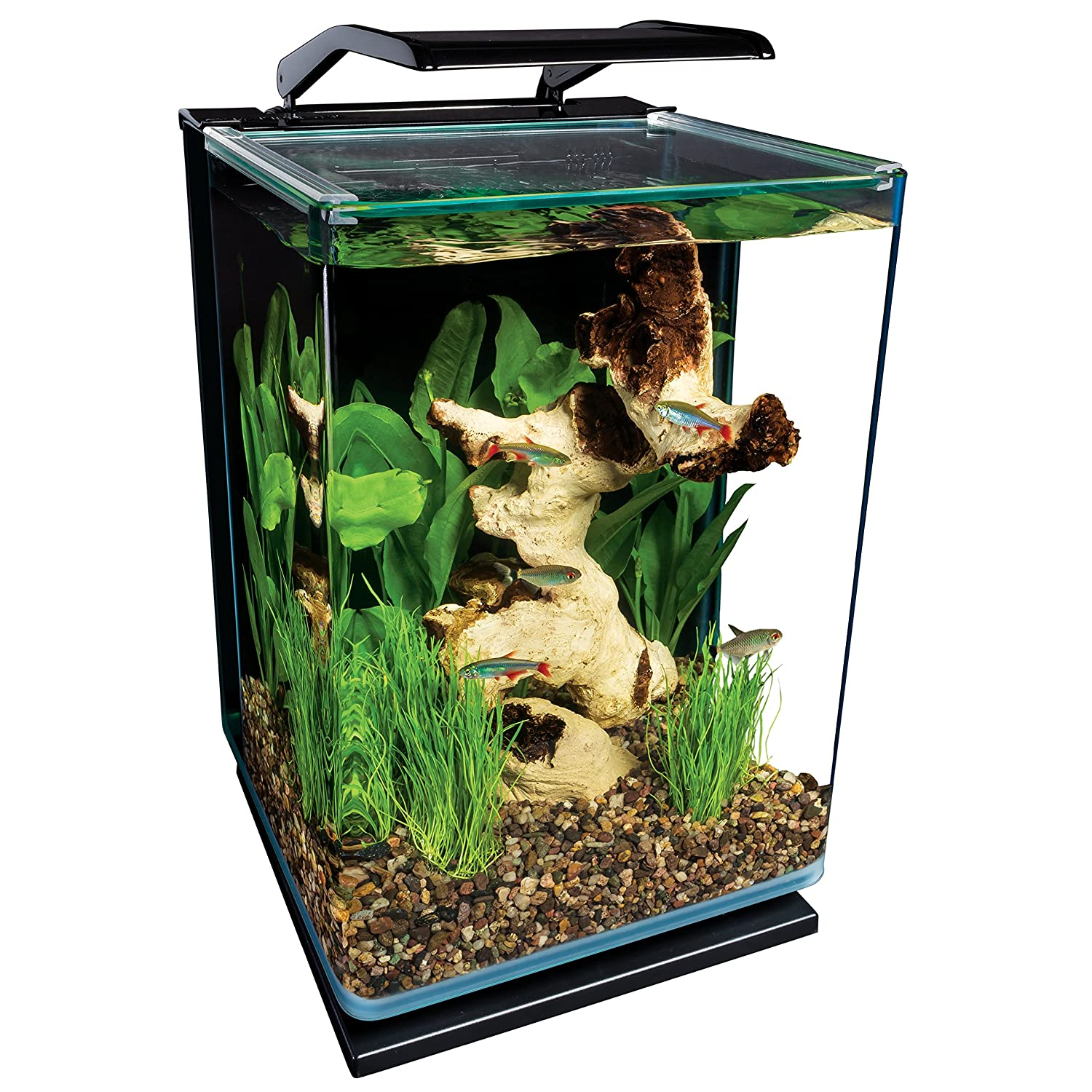 Fish blows starter kits aquarium aquatic water tank led for 5 gallon glass fish tank