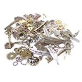 BIHRTC 235 Gram (Approx 135pcs) DIY Mixed Color Metal Skeleton Keys Wings Steampunk Watch Gear Cog Wheel Charms Pendant for DIY Crafts, Jewelry Making Accessory (Color: Assorted Color-235 Gram)