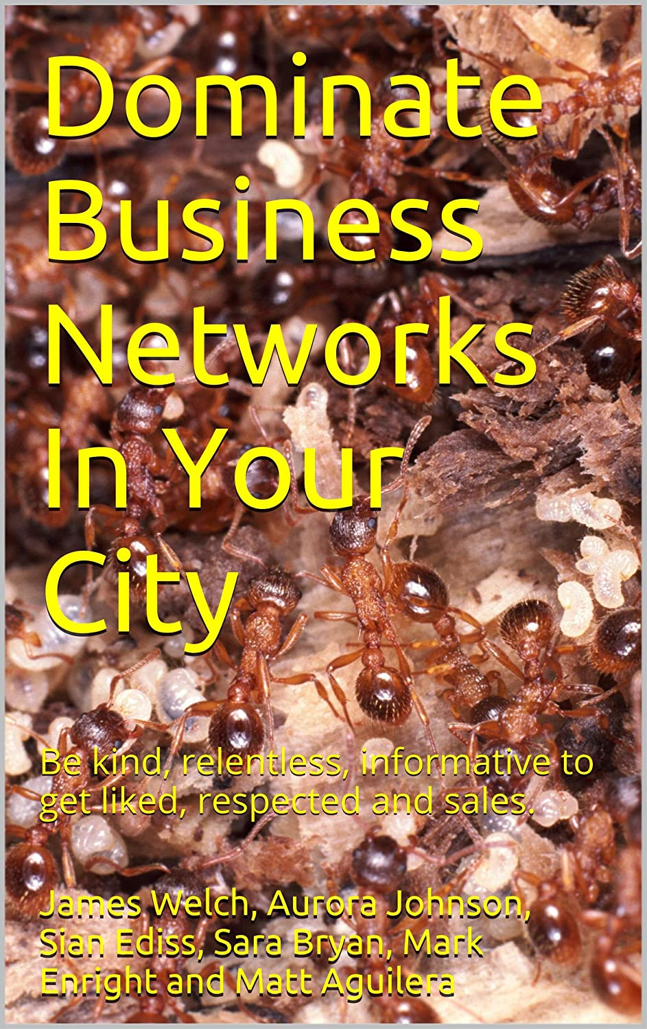 Dominate Business Networks in Your City Kindle Book