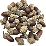 PEPPERLONELY Acorn with Caps, Glued Caps, 120 Gram Apprx. 25~30 PC, Great for Crafts and Fall Decoration, 1 Inch to 1-3/4 Inch (Color: 8#)