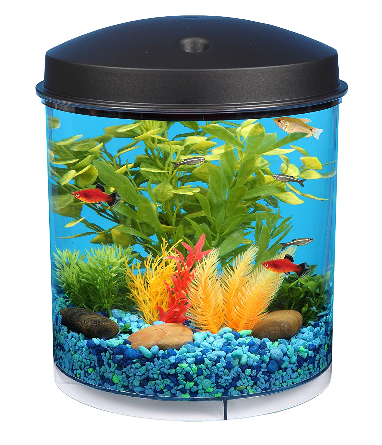 KollerCraft API Aquaview 360 Aquarium Kit with LED Lighting and Internal Filter, 2-Gallon