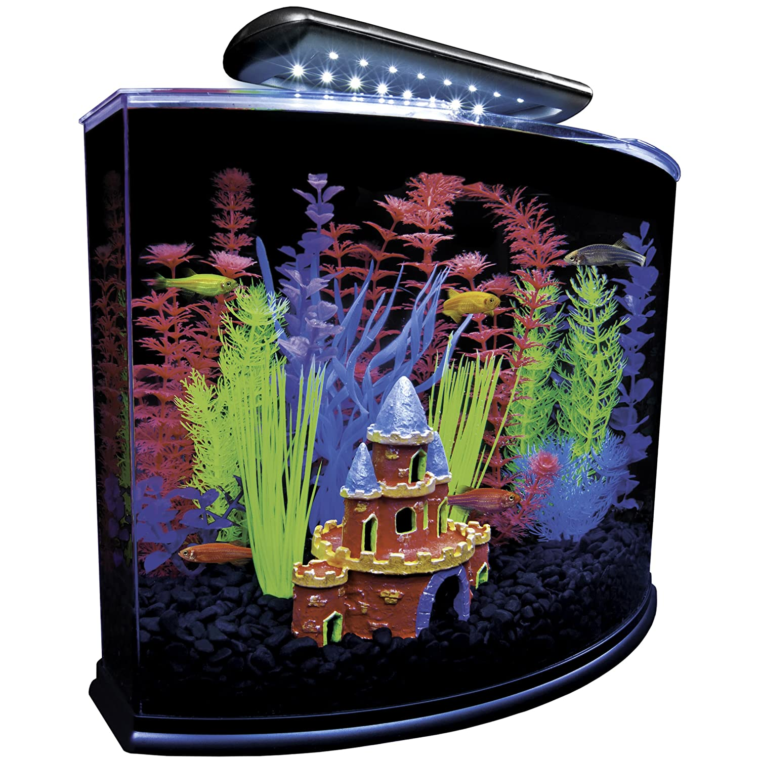 Cool fish tanks aquariums for Black light for fish tank