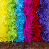 Feather Boa Set of 6 Vibrant Colors - Fits Any Occasion - Mardi Gras Decorations - Party Supplies - Costume Boas - 6.6ft, 40g Long Feather Boas - Fluffy - Costumes for Girls - Eco-Friendly