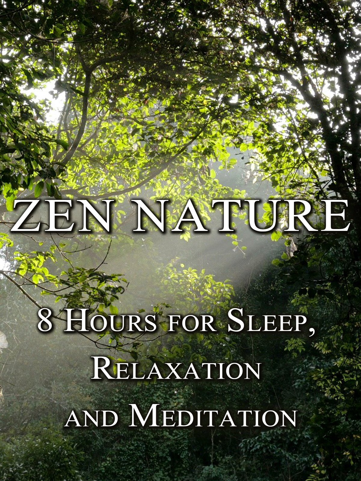 Zen Nature, 8 hours for sleep, relaxation and meditation