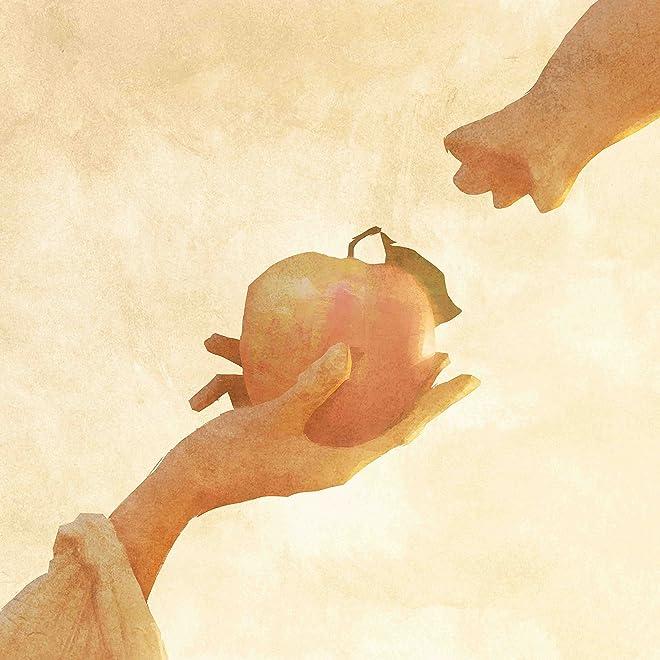 りんごの木 / 宇宙からやってきたにゃんぼー(DVD付)