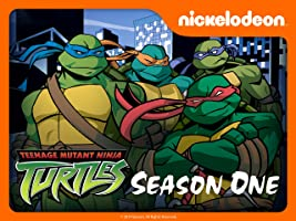 Teenage Mutant Ninja Turtles Season 1 (2003)