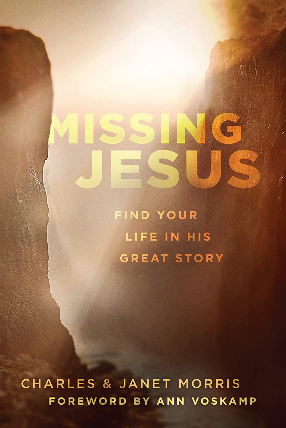 Missing Jesus: Find Your Life in His Great Story
