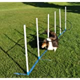 Cool Runners Ultimate Agility Weave Training Solution