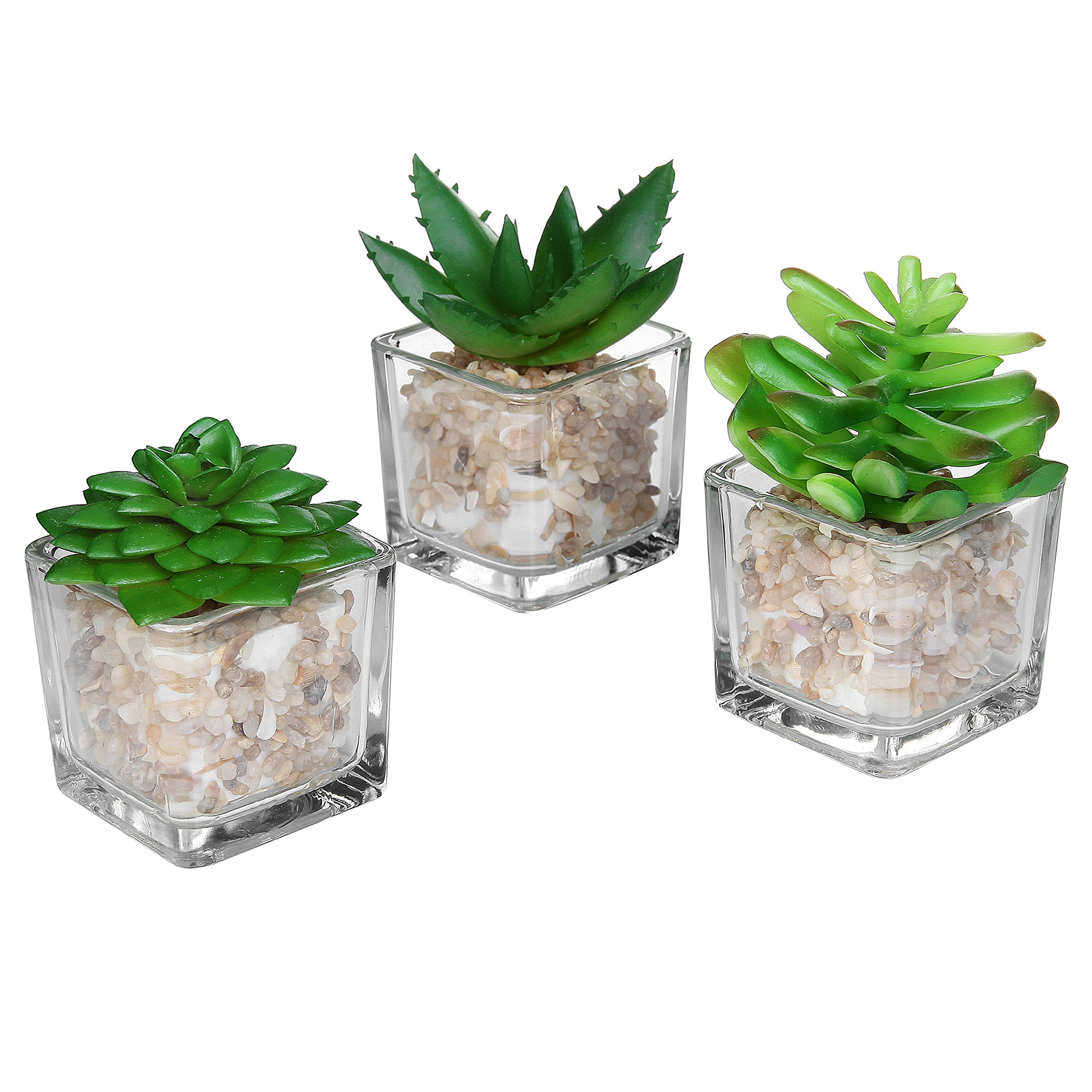 Small glass cube artificial plant modern home decor faux for Home decor with plants