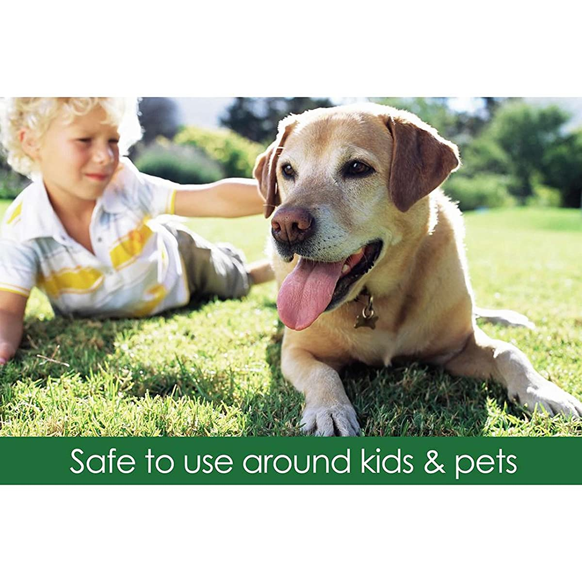 Safer Brand Ringer Lawn Restore, Lawn Fertilizer - 25 Pounds