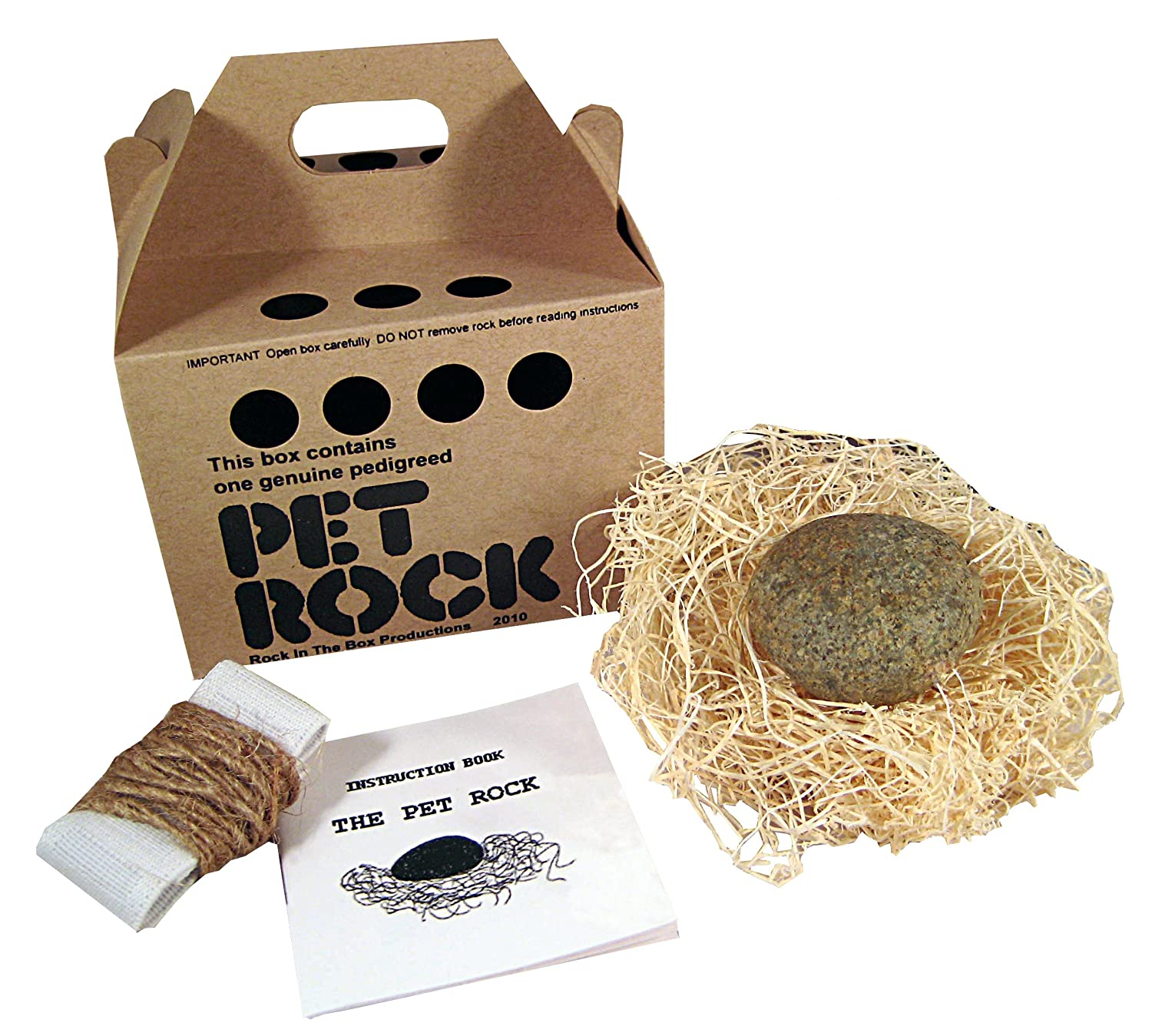 Pet Rock with a Walking Leash