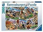 Ravensburger Postcard Parks Puzzle