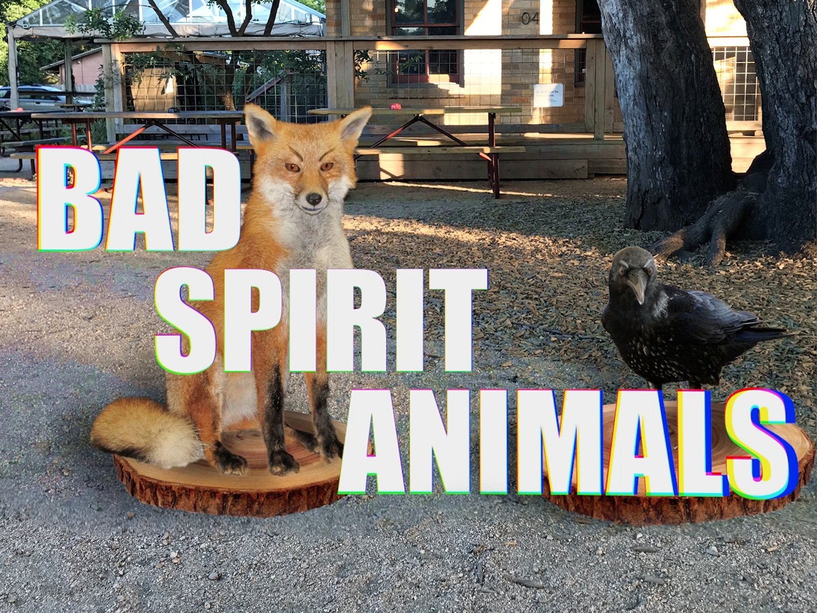 Bad Spirit Animals