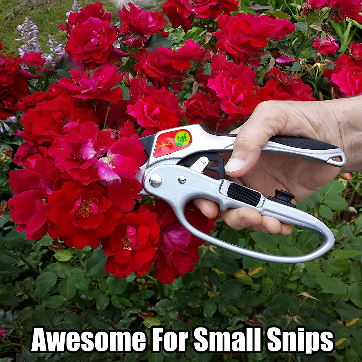 Pruners, Ratchet Pruning Shears, Garden Tool, For Weak Hands, Gardening Gift For Any Occasion, Anvil Style, By The Gardeners Friend