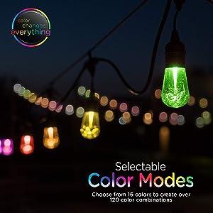 Enbrighten 37790 Vintage Seasons LED Warm White & Color Changing Café String Lights, Black, 48ft, 24 Premium Impact Resistant Lifetime Bulbs, Wireless, Weatherproof, Indoor/Outdoor, 48 ft, (Color: Black, Tamaño: 48 ft.)