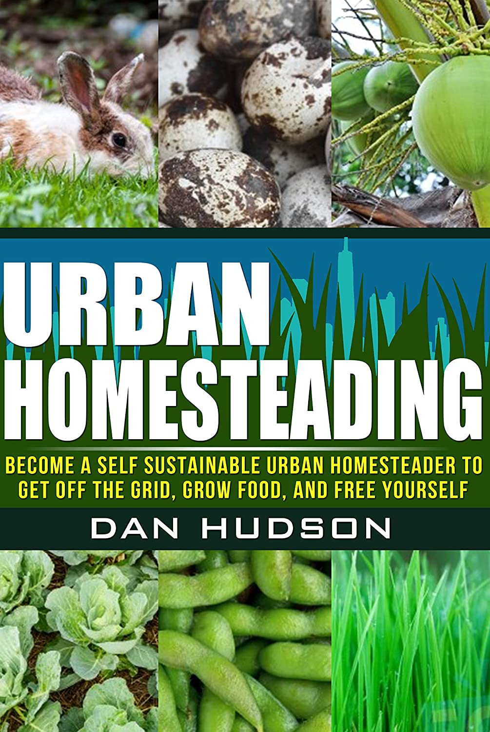 http://www.amazon.com/Urban-Homesteading-Sustainable-Homesteader-Yourself-ebook/dp/B00M2KSSE6/ref=as_sl_pc_ss_til?tag=lettfromahome-20&linkCode=w01&linkId=&creativeASIN=B00M2KSSE6