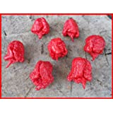 15 X -New- Carolina Reaper Seeds ***New World Record 2.200000 Scoville***
