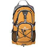 TETON Sports Oasis 1100 2 Liter Hydration Backpack Perfect for Skiing, Running, Cycling, Biking, Hiking, Climbing, and Hunting; 2 L Water Bladder Included; Free Rain Cover Included; Orange