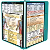 WhiteCoat Clipboard - TEAL - Physical Therapy Edition (Color: Black, Tamaño: 11.50