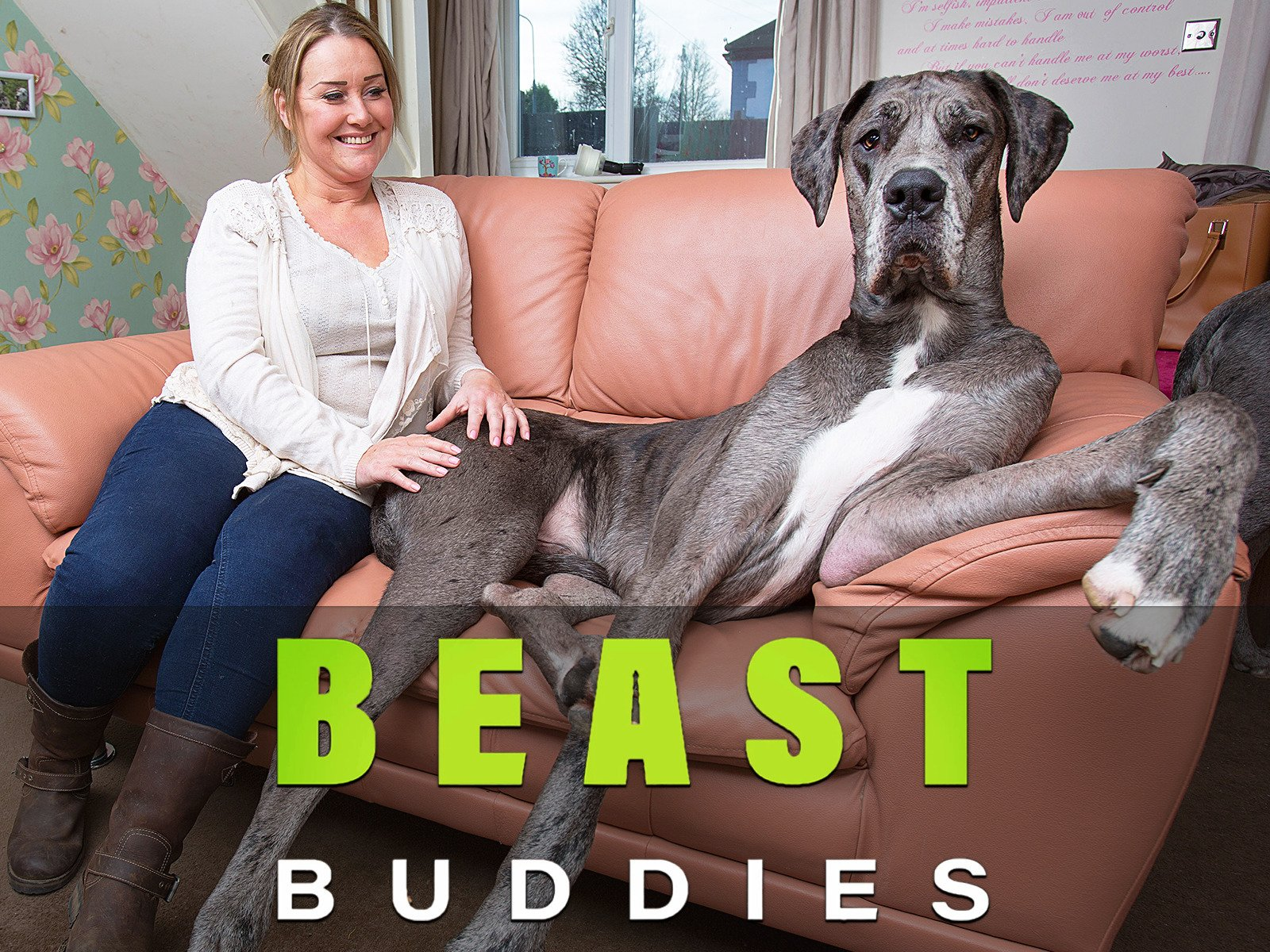 Beast Buddies - Season 2