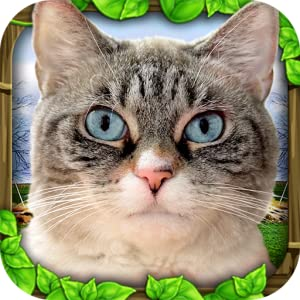 Stray Cat Simulator from Gluten Free Games