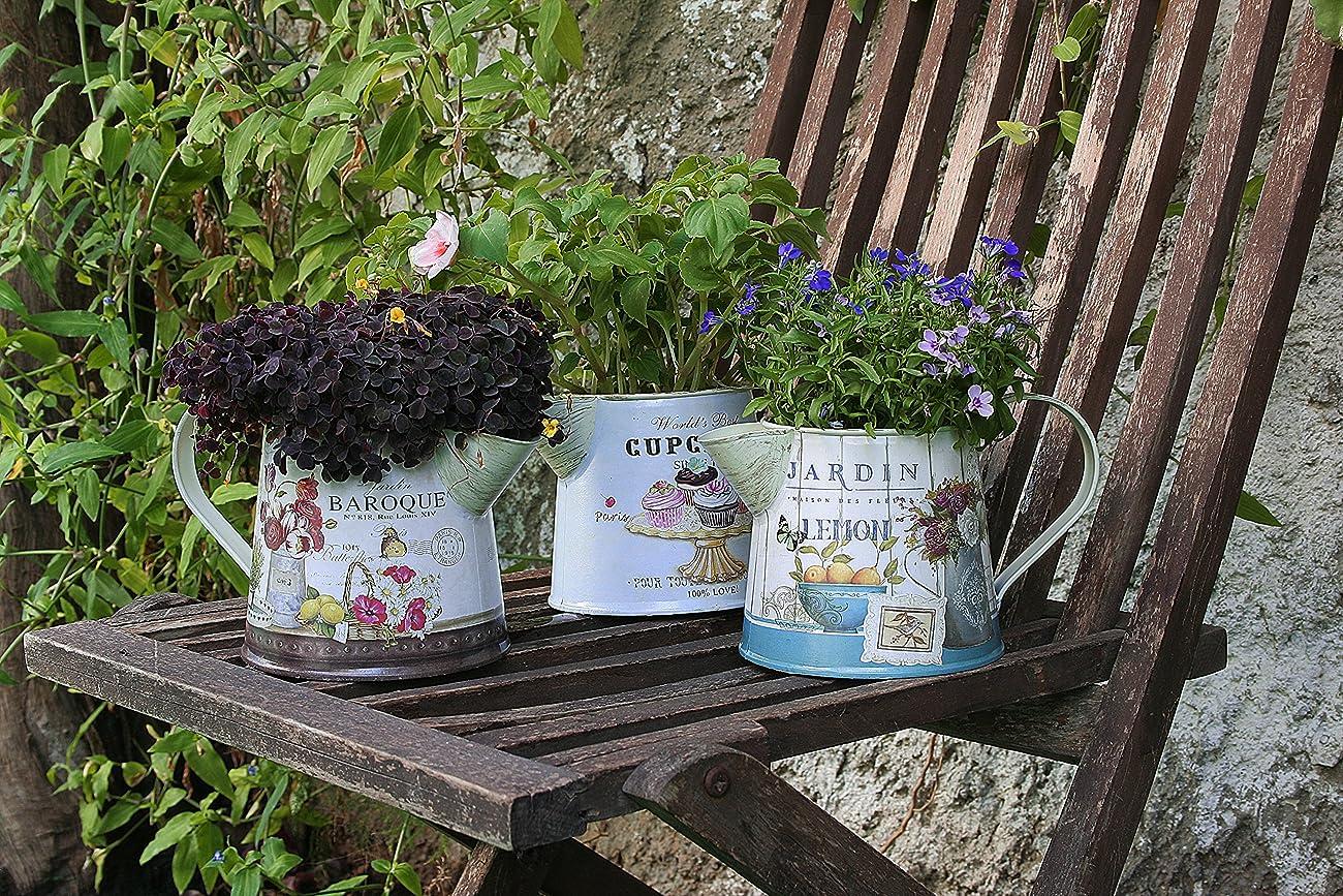 Janazala Small Flower Pots Indoor Decorative, Indoor Flower Pots, Set of 3 (Metal, Colorful) 2