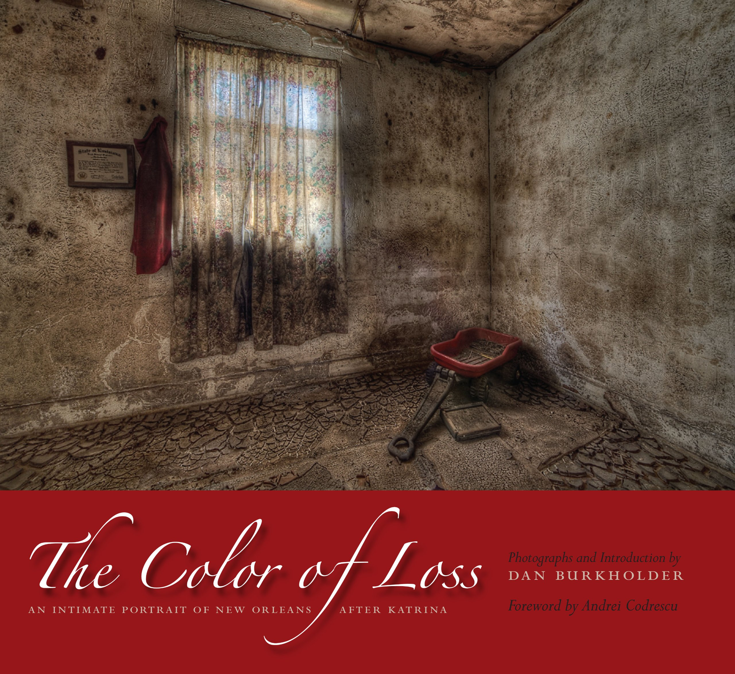 The Color of Loss: An Intimate Portrait of New Orleans after ...