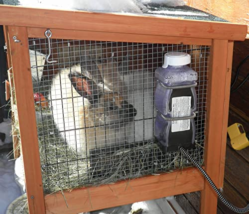 Heated Water Bottle for Rabbits
