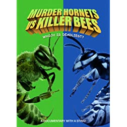 Murder Hornets Vs. Killer Bees
