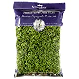 Super Moss 26912 Spanish Moss Preserved, Grass, 8oz (200 cubic inch) (Color: Grass Green, Tamaño: 200 cubic in Bag (Appx. 8oz))