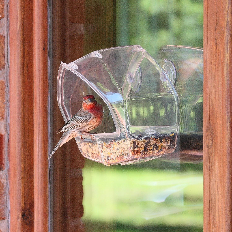 The Nifty Gifter Clear Window Bird Feeder 9