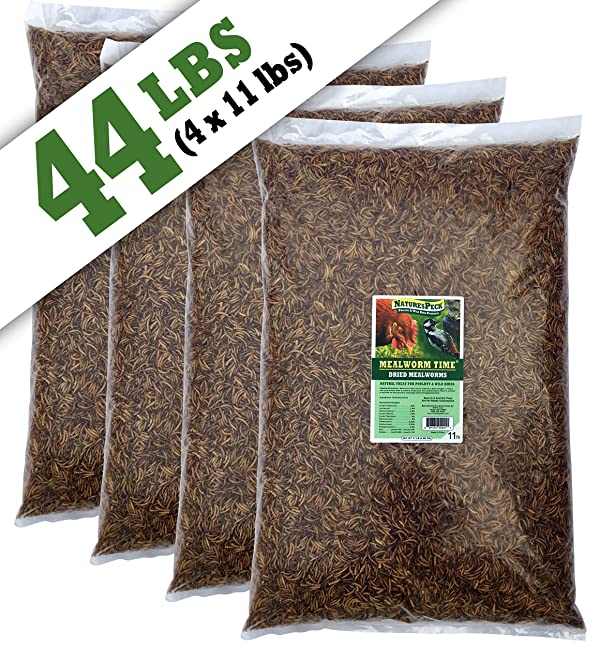 NaturesPeck Mealworm Time Dried Mealworms (44 lbs) Non-GMO (Tamaño: 44 lbs)