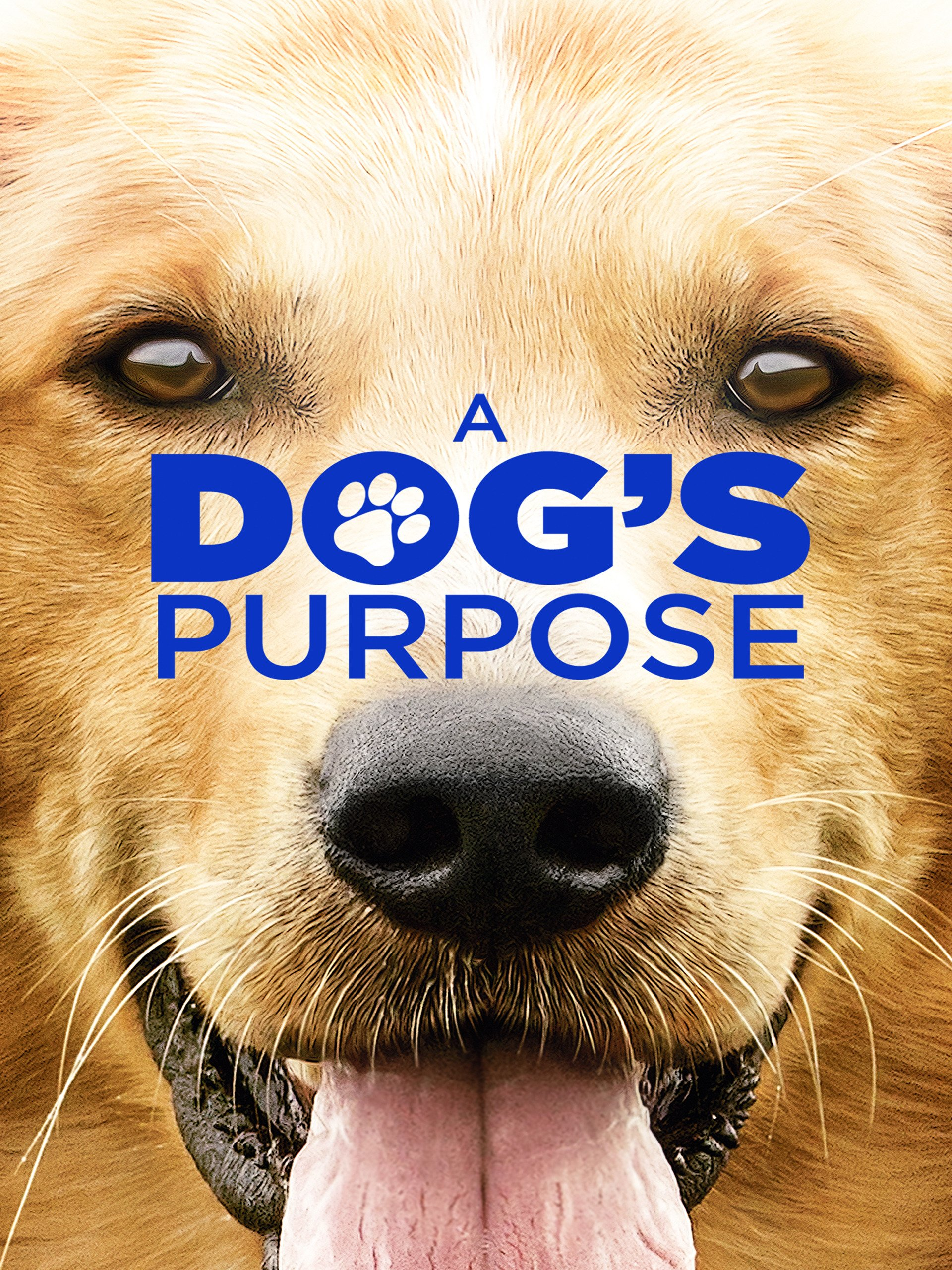 A Dog's Purpose on Amazon Prime Instant Video UK