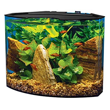 Best betta fish tanks reviews 2017 guides aquarium adviser for Betta fish tank size