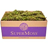 SuperMoss (21533) Forest Moss Dried, Natural, 3lbs