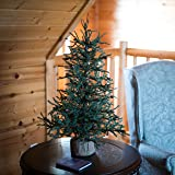 Vickerman Carmel Pine Tree with Burlap Base-Unlit, 42-Inch, Green (Color: Unlit, Tamaño: 42