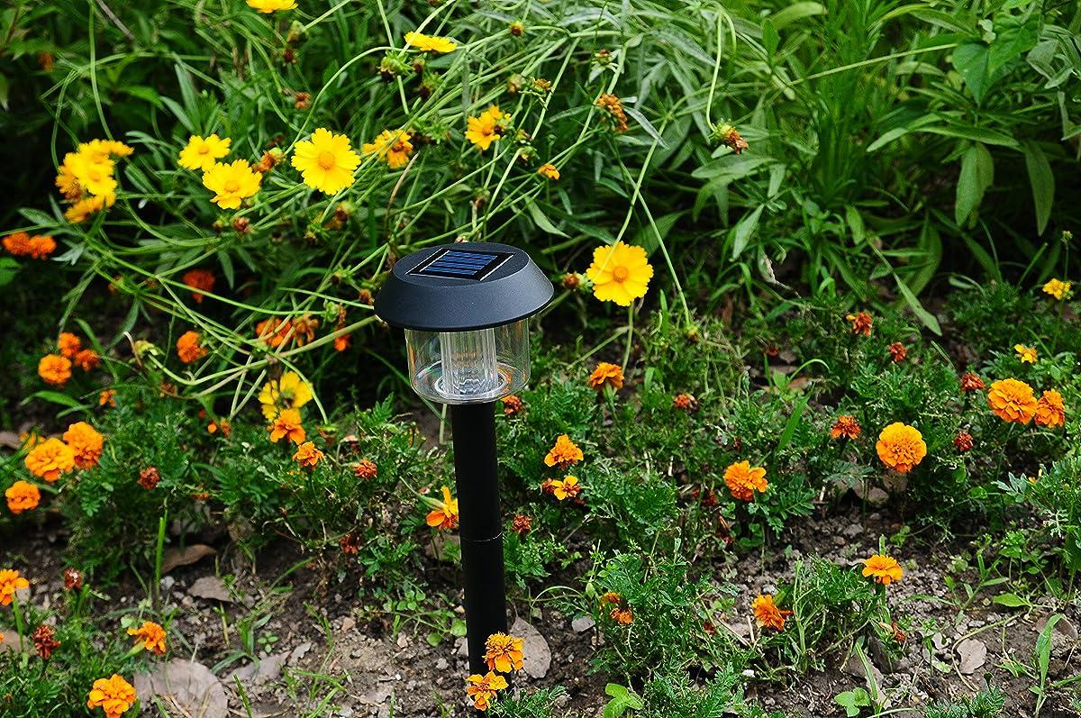 Solario Garden Decor Solar Powered Stake Lights- Pack of 6- Decorative Classic Lamps- Highest Lumen LED Brighter than Standard- Superior Monocrystalline Panel (Black)