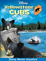 the Yellowstone Cubs