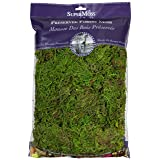 SuperMoss 7 59834 25322 8 Forest Moss Fresh Green 8oz, 200 in3 Bag (Appx