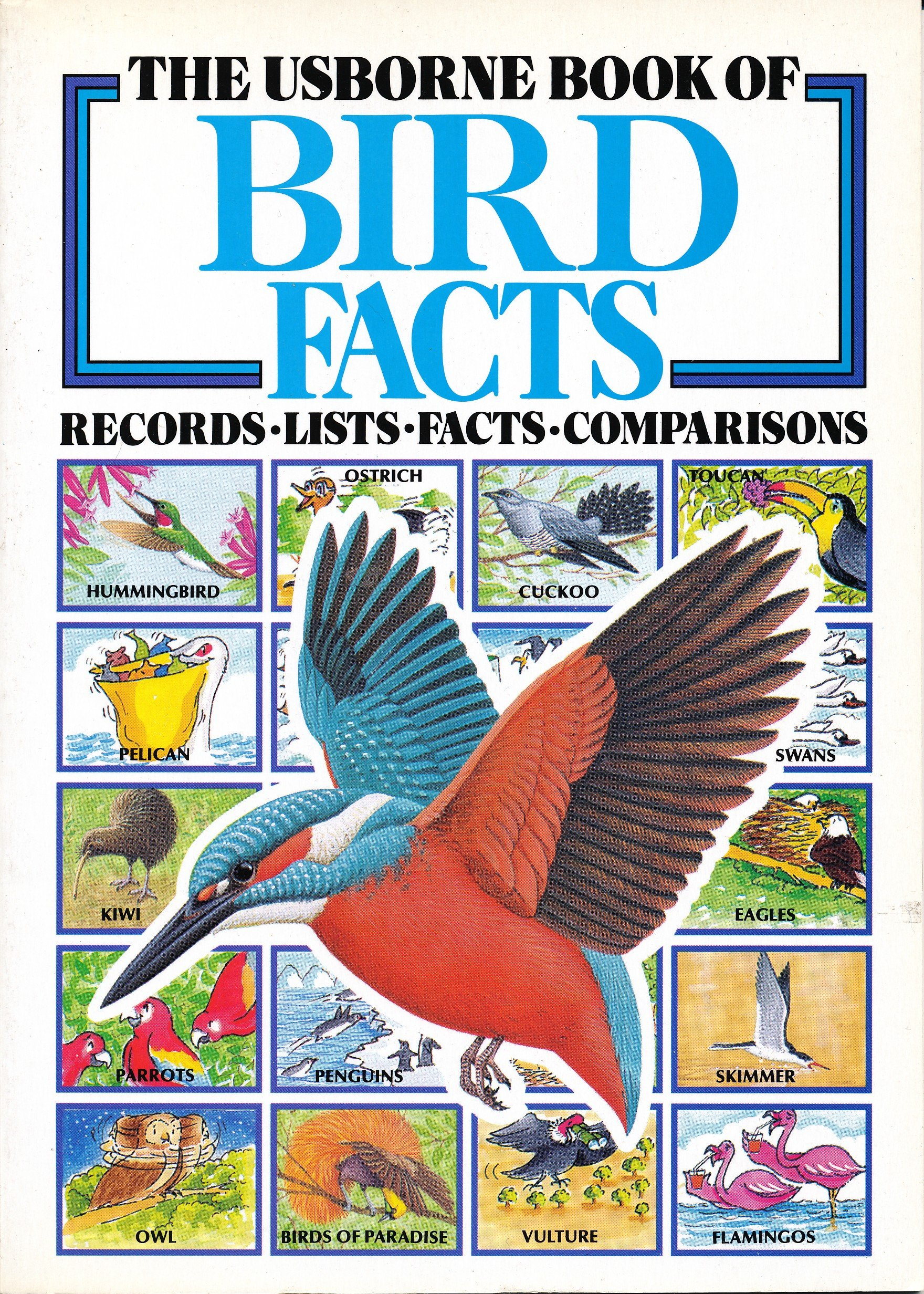 The Usborne Book of Bird Facts: Records, Lists, Facts, Comparisons, Gibbs, Bridget
