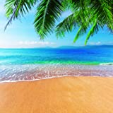 Dudaacvt Tropical Beach Photography Backdrops 10x10ft Sea & Blue Sky & Palm Tree Bbackground Vinyl Photo Backgrounds Customized Studio Props Q0061010 (Color: 6, Tamaño: 10x10ft)