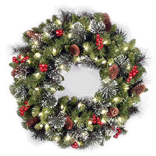 National Tree 24-Inch Crestwood Spruce Wreath with Silver Bristle/Cones/Red Berries/Glitter/50 Clear Lights