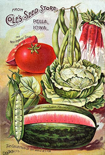 seed plant and nursery catalogs directory at Farmers Market Online
