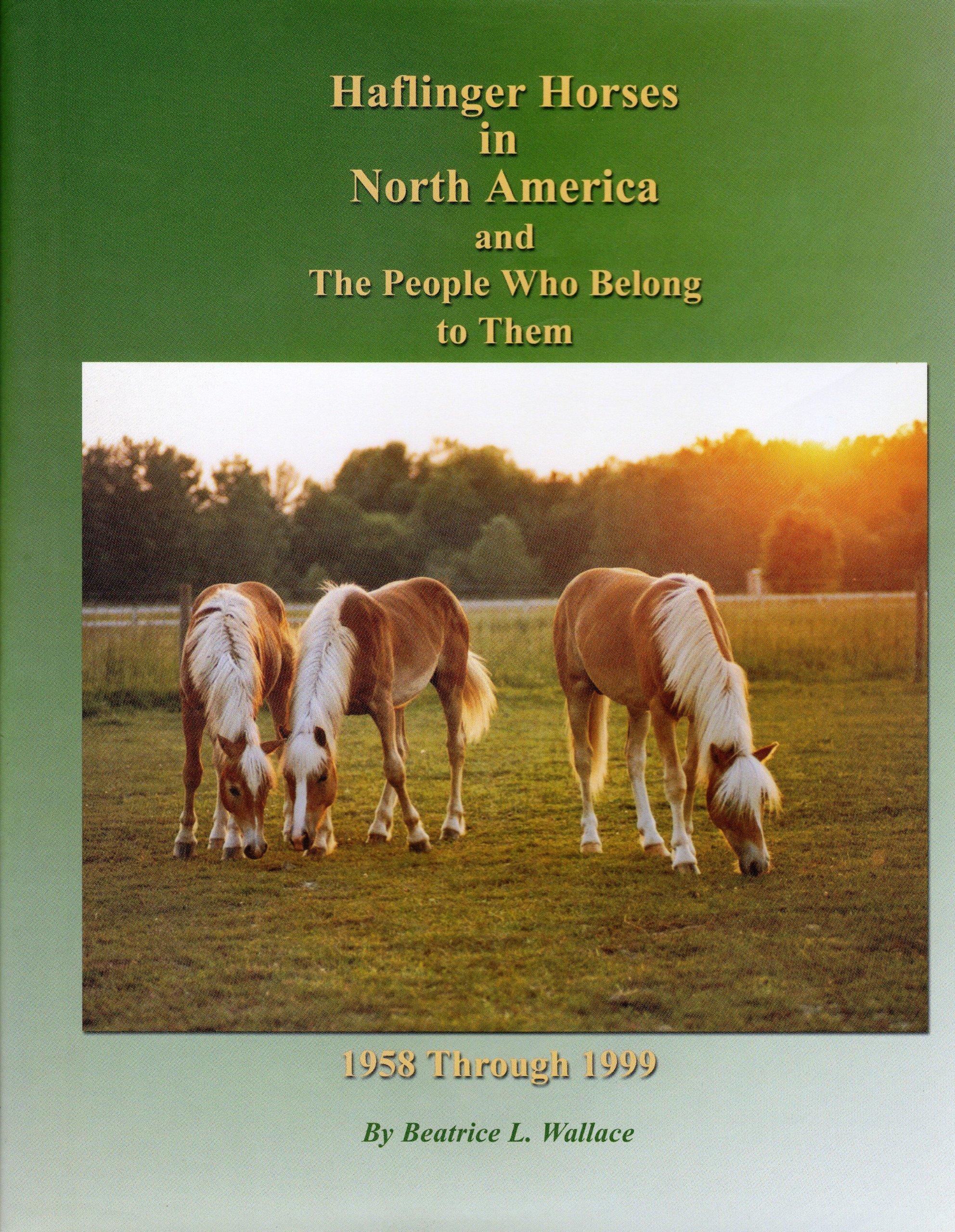 Haflinger Horse Book