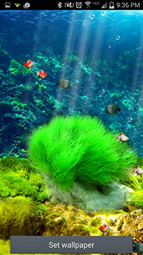 live wallpaper aquarium amazon appstore store top apps