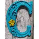 "Fun 6"" x 4.25"" x .5"" Cast Iron 3-D BLUE Wall LETTER "" C "" Wall Art Decor Alphabet Letter"