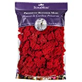 SuperMoss 23149 Reindeer Moss Red 220cuin, 200 cubic inch (in3) Bag (Appx. 8oz),